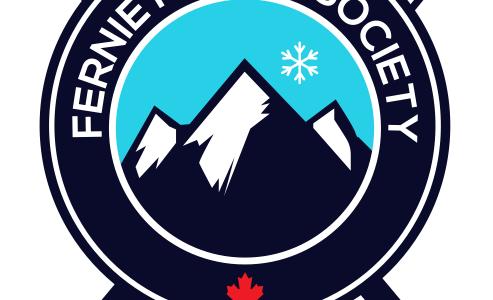 new fns logo