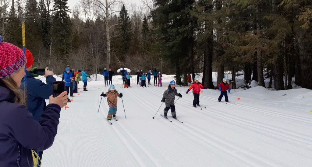 spring young skiers